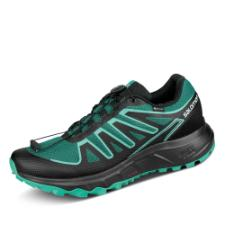 Salomon Lioneer GORE-TEX Outdoorschuh